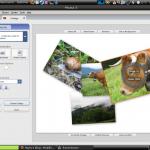 Création d'un Collage sous Picasa 3